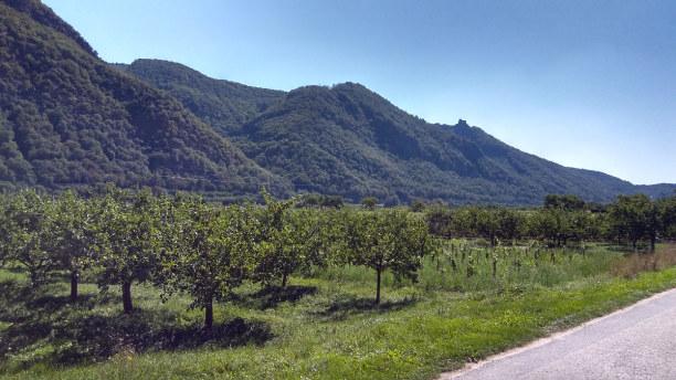 1 Woche Österreich » Wien und Umgebung
