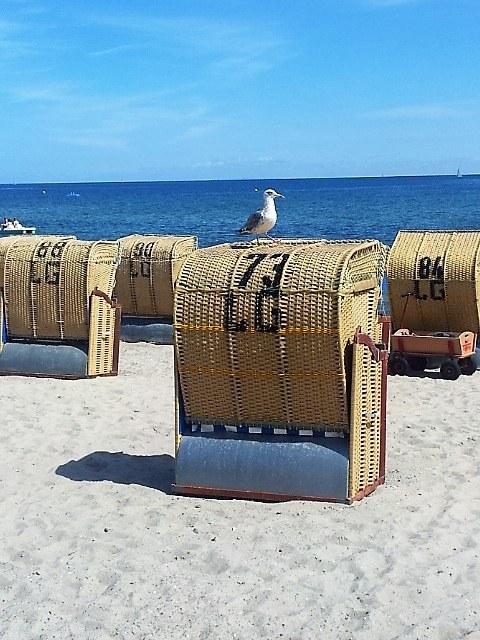2 Wochen Ostseeküste » Niendorf