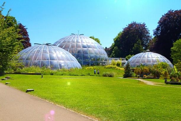 Kurzurlaub Kanton Zürich, Schweiz, Der Botanische Garten beherbergt 7000 verschiedene Pflanzenarten. Egal