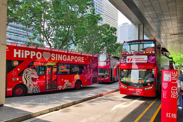 Kurzurlaub Singapur, Singapur, Hop-on Hop-off Bus (Hippo Singapore)