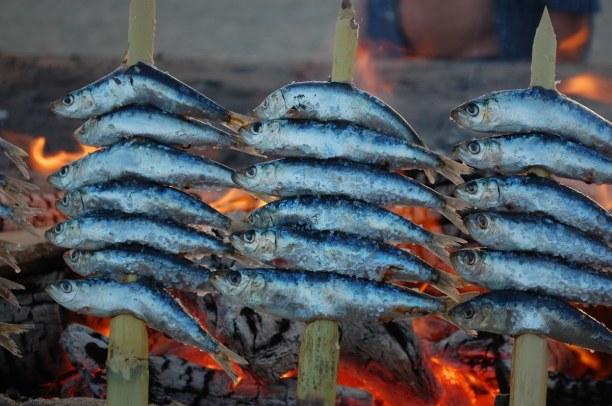 Zwei Wochen Andalusien, Spanien, Gebratenen Fisch mit einem guten Wein solltest du unbedingt einmal in