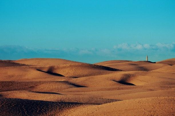 1 Woche Gran Canaria, Spanien, In Maspalomas gibt es zwischen den vielen Dünen die Oase La Charca. H
