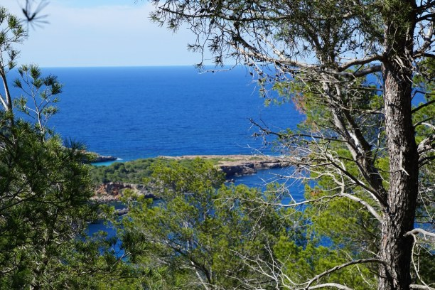 Kurzurlaub Ibiza, Spanien, Die Strände Cala de Sant Vincent und Cala Salada sind die Hotspots un