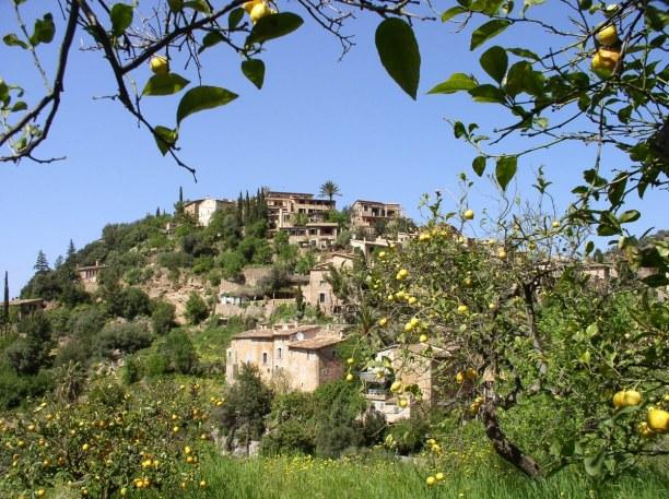 Eine Woche Mallorca, Spanien, Das Tal von Sóller wird auch das Tal der Orangen genannt, da es hier