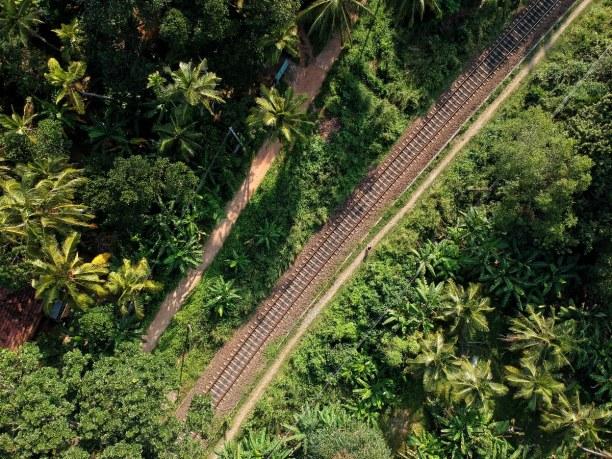 2 Wochen Sri Lanka, Sri Lanka, Mirissa, Sri Lanka