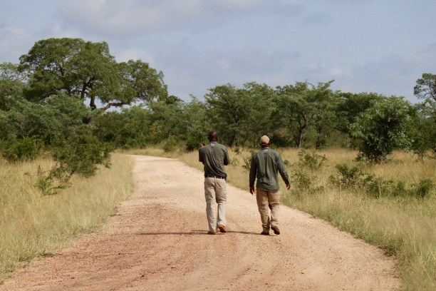 Kurztrip Nationalpark, Südafrika, Die Tracker suchen am Boden nach Spuren von Wildtieren. So haben wir a