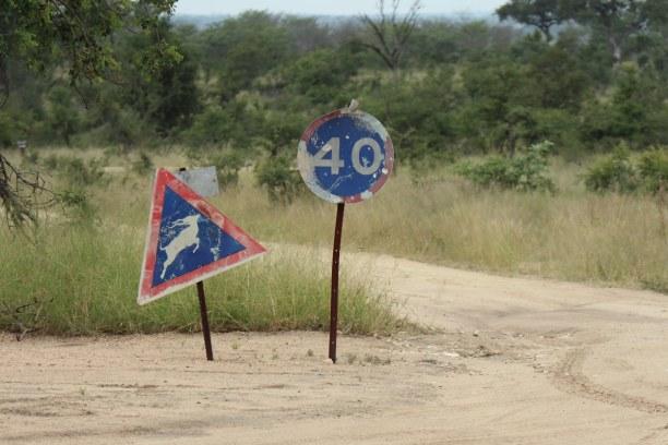 Kurzurlaub Nationalpark, Südafrika, Bei der Einfahrt zum Manyeleti Game Reserve kommen wir an diesen Hinwe