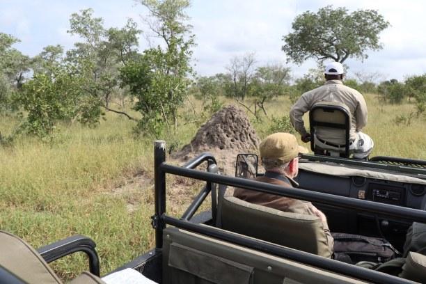 Kurztrip Nationalpark, Südafrika, Termitenhügel wie dieser hier gibt es überall im Süden Afrikas.