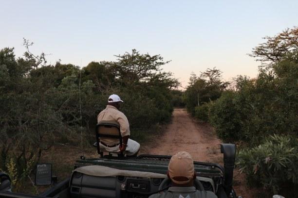 Kurzurlaub Nationalpark, Südafrika, Abendlicher Game Drive durch das private Game Reserve. Dieses befindet