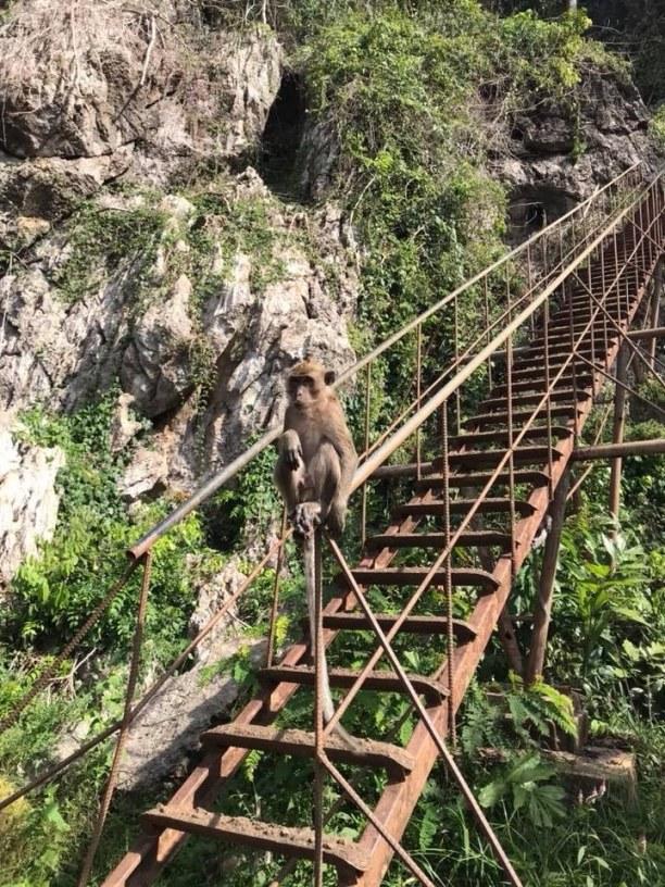 Zwei Wochen Thailand » Phuket und Umgebung