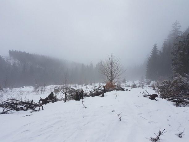 Kurztrip Thüringer Wald » Manebach