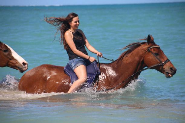 Drei Wochen Tobago, Trinidad und Tobago, Beeing with horses- ein traumhaftes Erlebnis