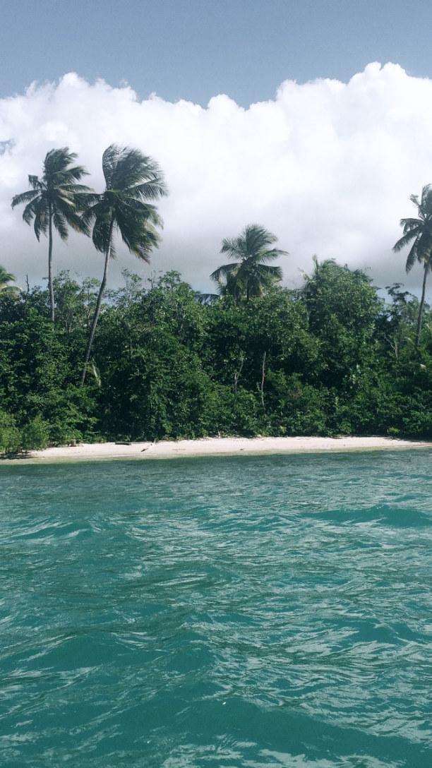 3 Wochen Tobago, Trinidad und Tobago, Buccoo Beach- Blick von unserem Glass-bottom Boot aus