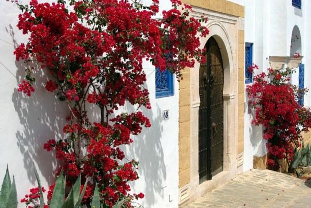 Langzeiturlaub Tunesien » Tunesien