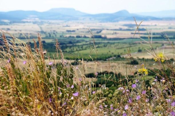 1 Woche Balaton (Plattensee), Ungarn, Im Hinterland vom Nordufer kannst du schöne Wandertouren machen. Wie