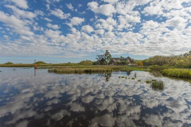 Langzeiturlaub Florida, USA, Everglades so weit das Auge reicht...Sumpf, Sumpf, Sumpf :)