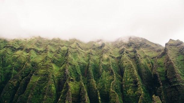 """Eine Woche Hawaii, USA, Kauai trägt den Beinamen """"Die Garteninsel"""", wegen der üppigen Vegeta"""