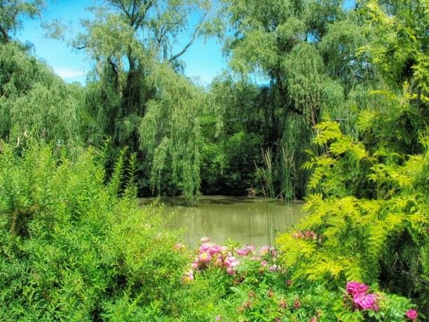 Kurztrip Illinois, USA, Chicago Botanic Garden
