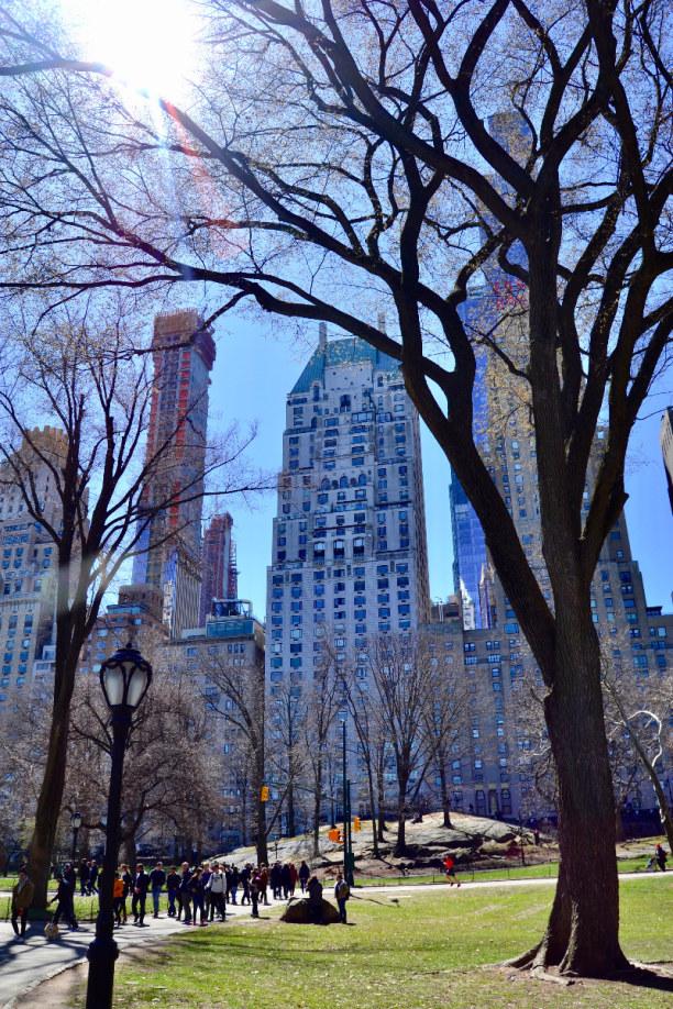 10 Tage New York, USA, So ein wunderschöner und romantischer Park mitten in der Stadt!